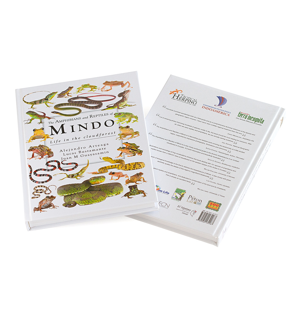 Amphibians and reptiles of Mindo